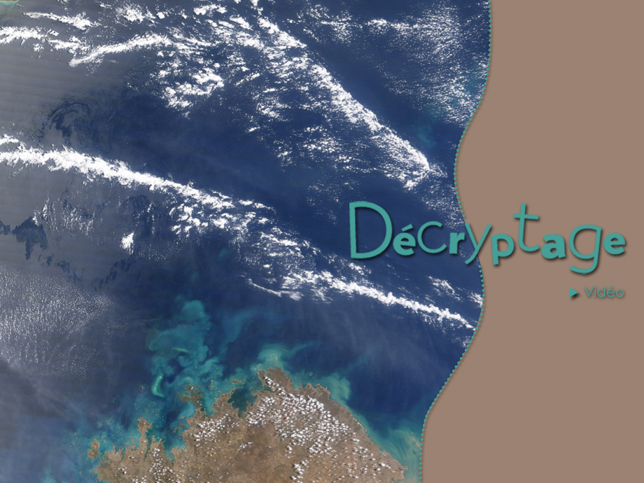 decryptage_timor_aqua.jpg