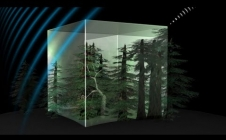Biomass : le poumon de la planète étudié par satellite