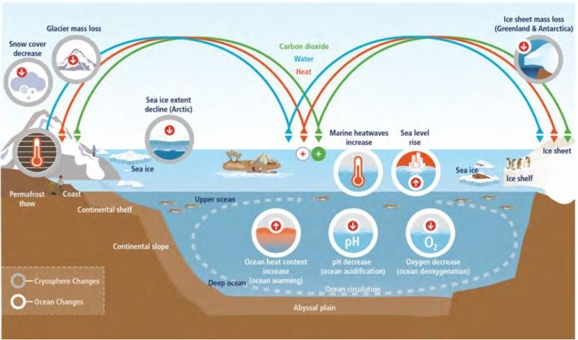 Observation et modélisation des changements historiques dans l'océan et la cryosphère depuis 1950, et projection des changements futurs dans le cadre d'un scénario d'émissions de gaz à effet de serre faibles (RCP2.6) et élevées (RCP8.5)