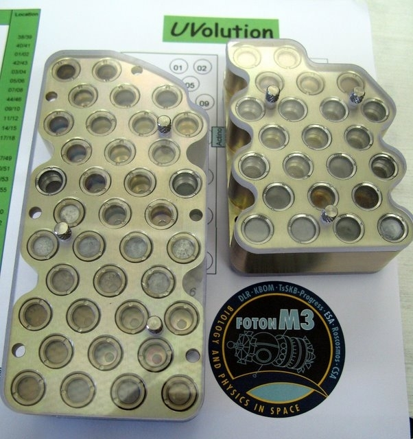 Samples from the Uvolution experiment.