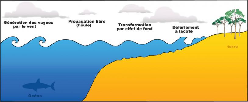 Les vagues naissent de l'énergie transmise par le vent. Crédits : energies2demain.com.